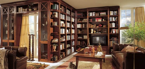 huge Home Library Interior Design