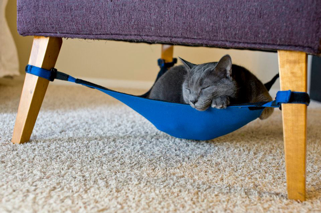 Cute Hammock for Pets by Cat Crib