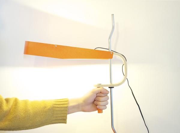 Unique Goatee Desk Lamp 2013