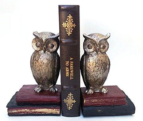 Bombayjewel Wide Eyed Owl Bookend Pair