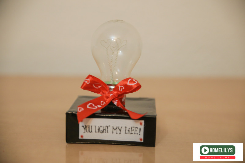 Finished DIY project using recycle light bulb for your other half