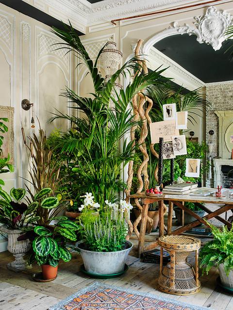 interior design full of flower of a little venice room summer by sera of london