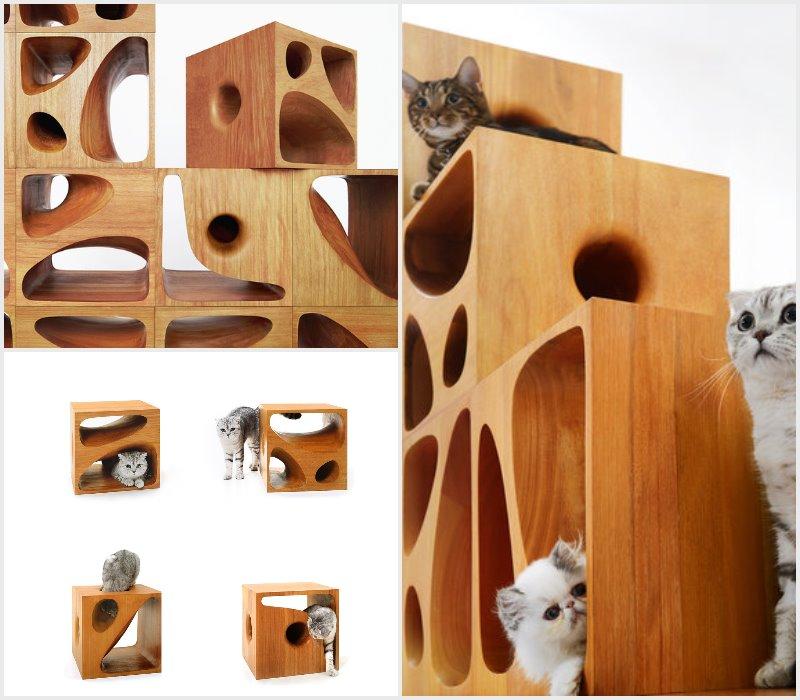 modular design catable 2.0 make your cat happy