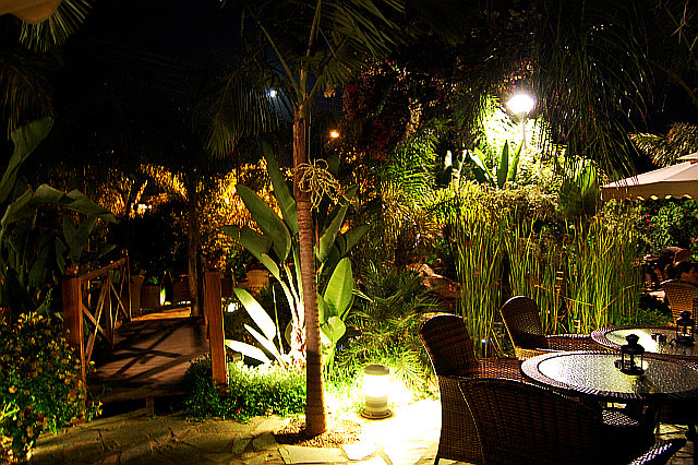 tropical private home garden at night