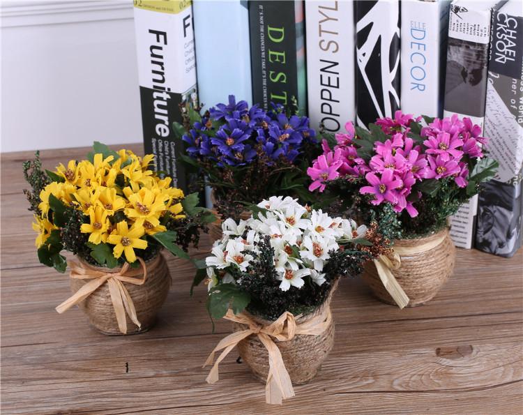 daisy flower in pot arrangement