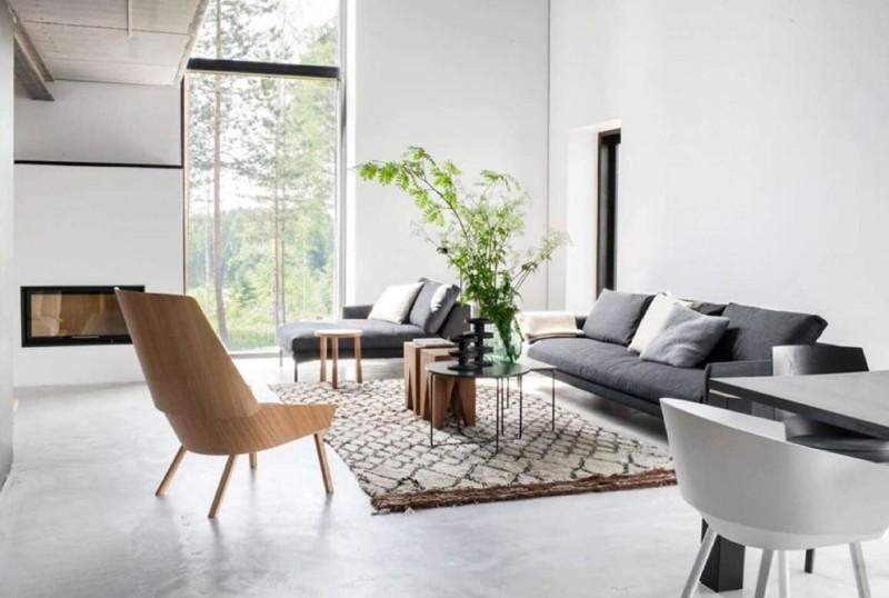scandinavian living room with plant
