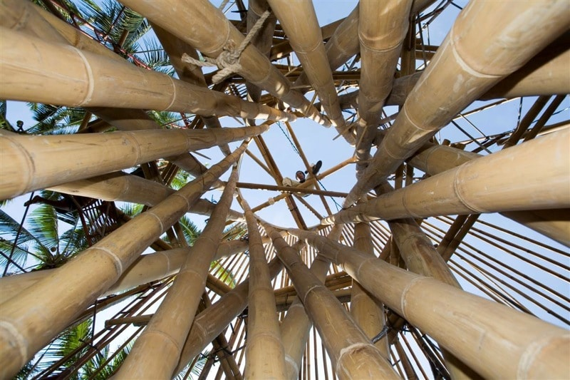 why bambo the ibuku design way