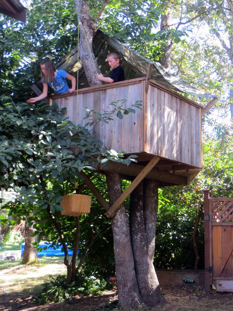 a treehouse for kids diy