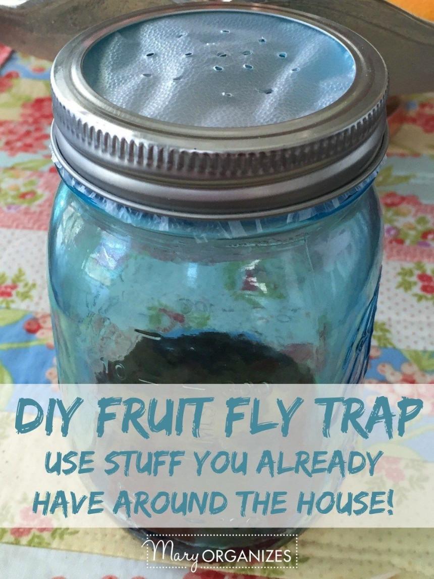 mason jar fly trap with vinegar